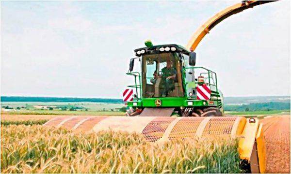 """Platforma pentru recoltare directă """"PROFI CUT"""""""